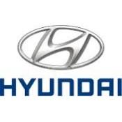 HYUNDAI/ MITSUBISHI