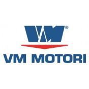 VM MOTORES